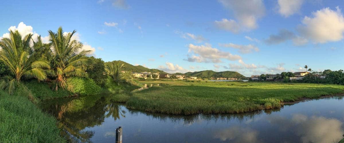 Kaelepulu Wetland