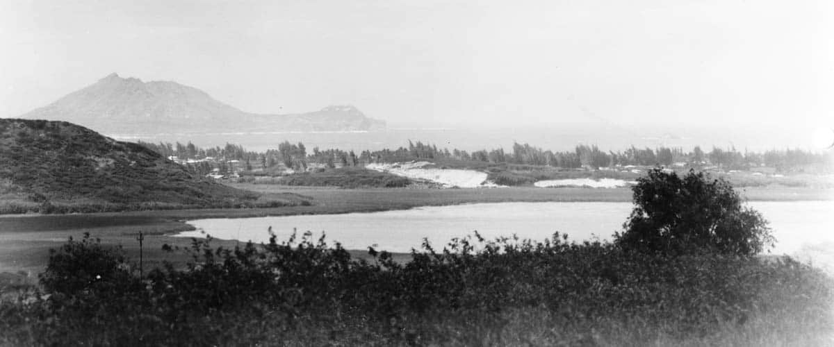 History of the wetland